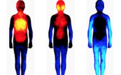 Maux corporels, les mots de votre corps